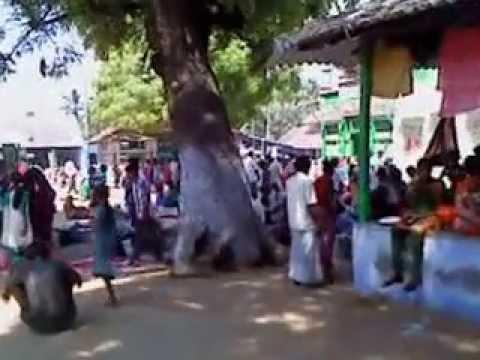 Athankarai Pallivasal (ஆத்தங்கரை பள்ளிவாசல்) - Hasan Ali Fatima Dargah