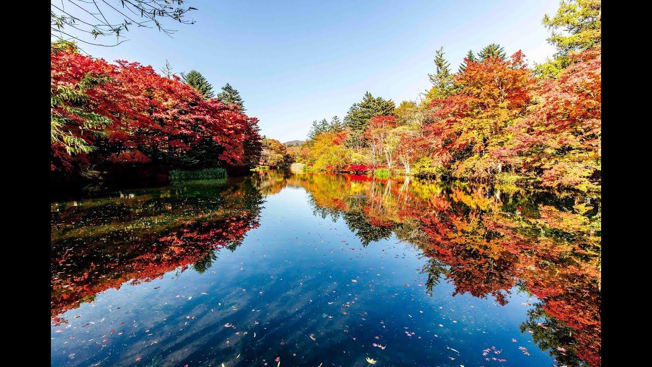 軽井沢の紅葉 雲場池 Karuizawa Kumoba Lake【最高畫質】 - YouTube