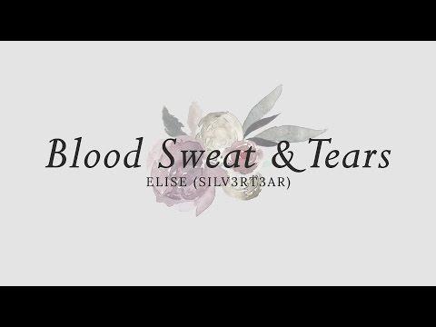 (Acoustic English Cover) BTS - Blood Sweat & Tears (피 땀 눈물)   Elise (Silv3rT3ar)