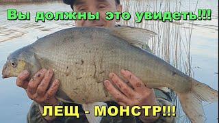 Жор огромного леща Простой рецепт супер прикормки Рыбалка на донку