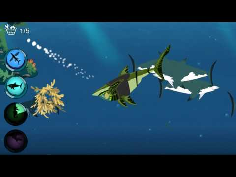 [Kid Game] Wild Kratts Game -  Mermaid  Game - Seabed Explorers - Intellectual Game For Baby  