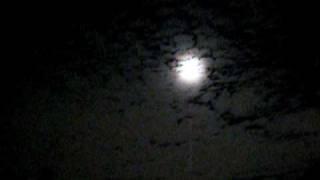 Moony Night