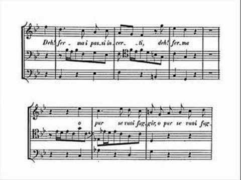 bach cantatas dessay haim Dessay natalie baroque erato natalie baroque les arts florissants / william christie, le concert d`astree / emmanuelle haim (bach cantatas, magnificat.