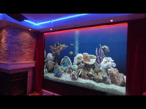 Bet you never seen a projection screen like this! My custom movie theater projection screen!
