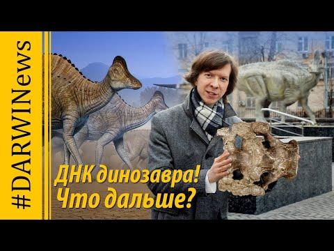 Найдена ДНК динозавра! Что мешает клонированию? Ярослав Попов #DARWINews