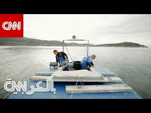 ما الذي يهدد نمط الحياة في غرينلاند؟  - نشر قبل 3 ساعة