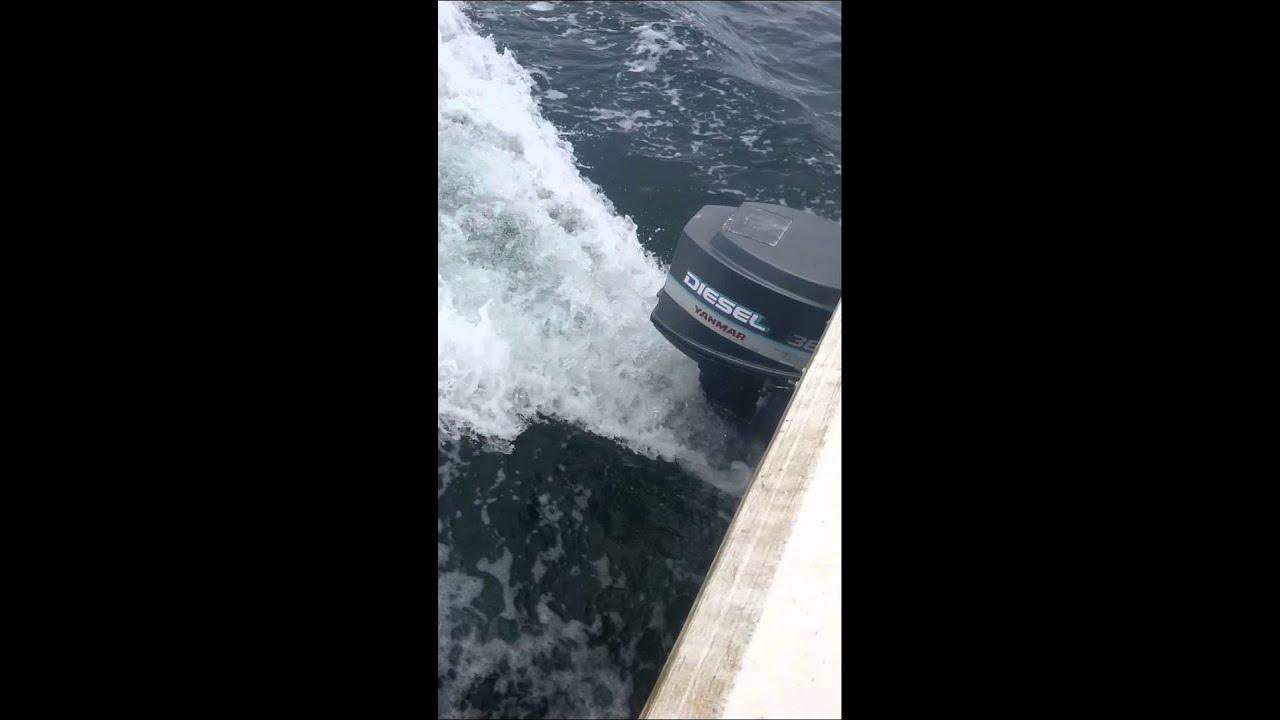 sports shoes d1327 b3e87 Yanmar D36 Diesel Outboard