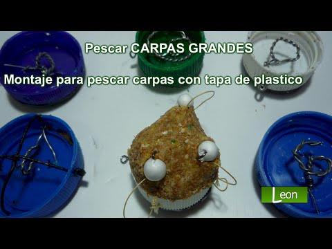 Super TAPITA para pescar CARPAS y BOGAS. Montaje para pescar carpas con tapa de plástico.