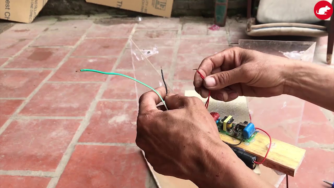 Glue Trap & Mouse Trap/Homemade Glue Mouse Trap Work ...