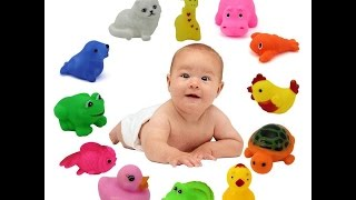 Unbox Review - Pack of 13 Animal Whistle Bath Toys - Rank No 6 on Amazon in Bath Toys