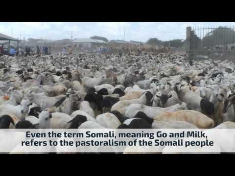 Somali History , Culture