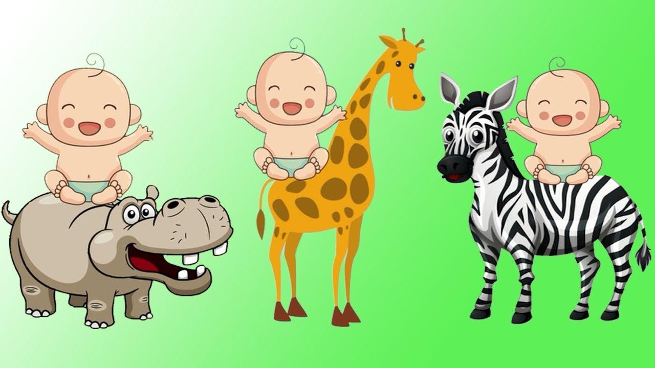 Unduh 44 Gambar Animasi Binatang Buas Terbaru Gambar Animasi
