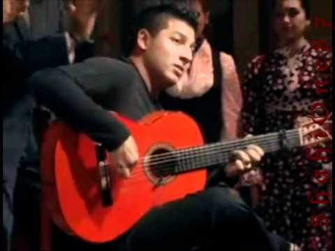 Amazing Flamenco Guitarist | Buleria