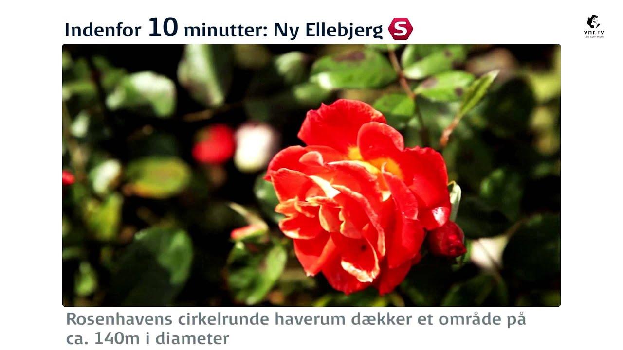 Indenfor 10 Minutter Ny Ellebjerg Rosenhaven Vigerslev