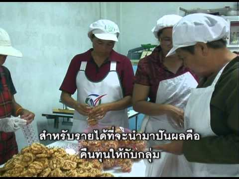 Seven Success Stories from Northeastern Thailand (Thai Version)