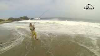 Pesca de la Corvina, FullPesca.cl