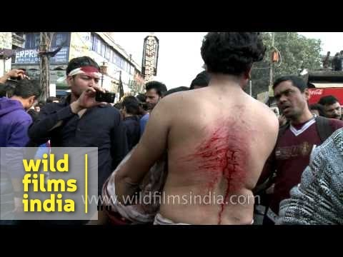 Shiite Muslims bleed as they flagellate themselves during Muharram