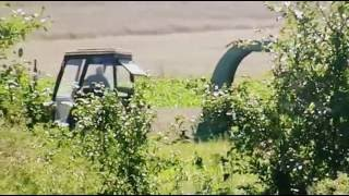 Maszyny - Traktory Rolnicze w Akcji - Traktor Na Polu w Polsce Na Wsi - Zbieranie Lucerny