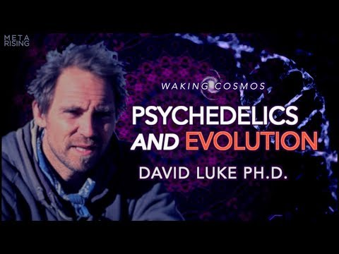 """Psychedelics and Human Evolution 