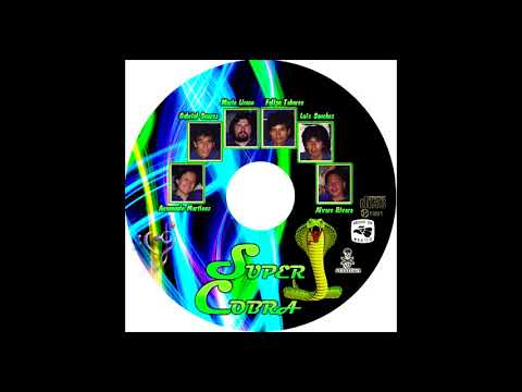Grupo Super Cobra de Mario Limon