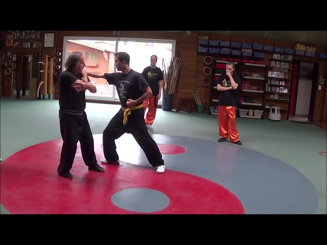 Grandmaster Walter Toch with Bagua as selfdefense