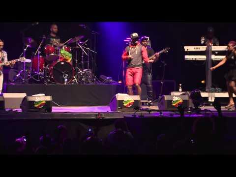 Live de Mr Vegas au Reggae Sun Ska Festival 18ème édition