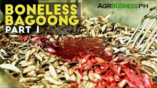 Boneless Bagoong Part 1 : Bagoong Industry in the Philippines | Agribusiness Philippines