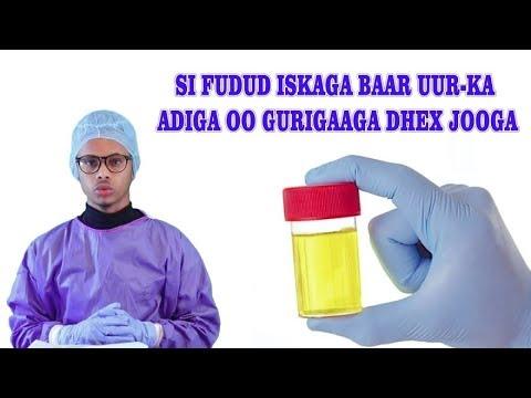 Download SI FUDUD ISAGA BAAR UURKA ADIGA OO GURIGAAGA DHEX JOOGA. Drfaris