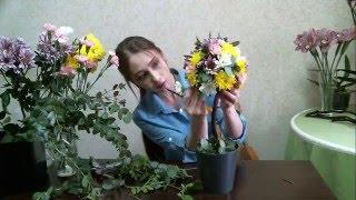 как сделать топиарий из живых цветов