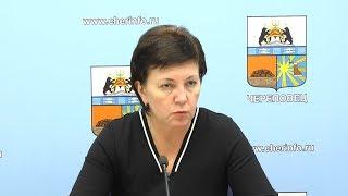 Елена Авдеева о новых автобусах