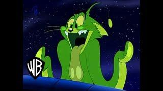 El Show De Tom y Jerry | Gato Nebuloso  | En Español ( Parte 1/2 )