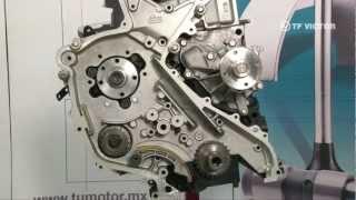 Sensor de alta presión en el Distribuidor De Combustible Para Nissan Navara Cabstar Pathfinder 2.5 3.0 DCI