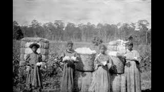 The Slave Hunters Alibi(2)