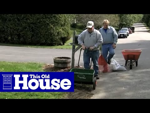 How to Remove Crabgrass - This Old House