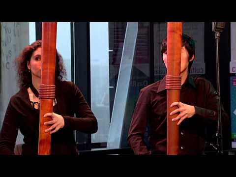 The Royal Wind Music - Pierre Phalèse/ Bransle Gay