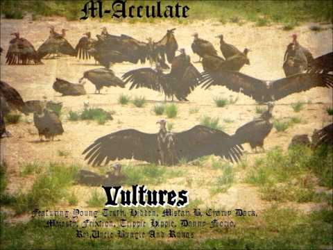 M-Acculate Vultures