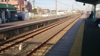 255系 特急しおさい 入線シーン 八日市場駅