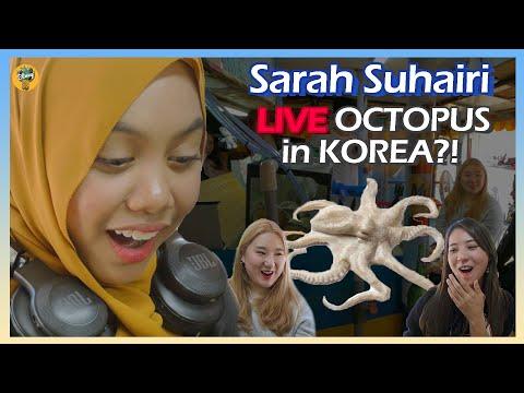 Artis Malaysia Makan Sotong Mentah Untuk Pertama Kali Di Korea [Trail To Busan] EP01