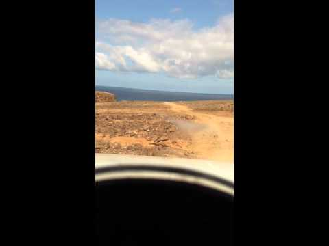 Off road blues safari fuerteventura