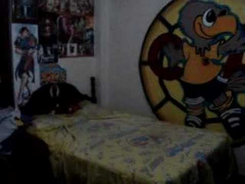 Cuarto aguila youtube - Decoraciones de paredes ...