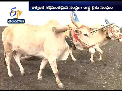 Big plans in store to strengthen Telangana agri sector