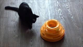 Трек для кошек PetStages