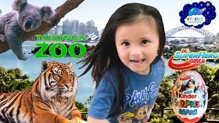 Taronga Zoo Sydney Kid Family Fun Trip Giant Kinder Surprise Egg Super Hero DC Comic with Evren