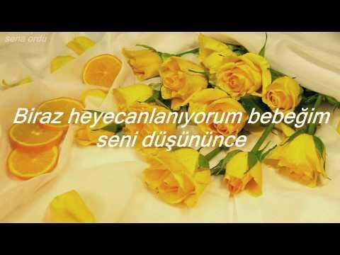 Shawn Mendes - Nervous Türkçe çeviri
