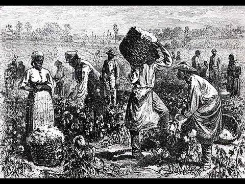 History Of Negro Slavery(1)