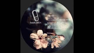 Hector Moran - Goosepops (Daniel Allen Remix)