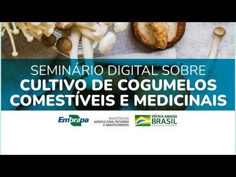 Seminário Digital Cogumelos Comestíveis e Medicinais