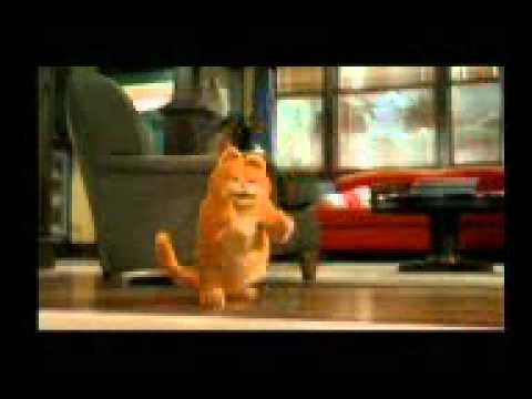 Kucing Garong Garfield Youtube