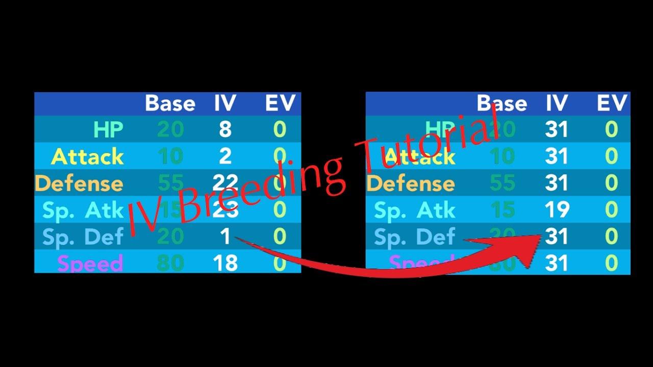 Pokémon Brick Bronze Iv Explanation Tutorial