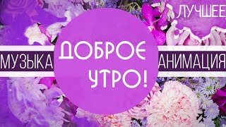 Видео с добрым утром, родная! Красивая анимация с цветами и музыкой